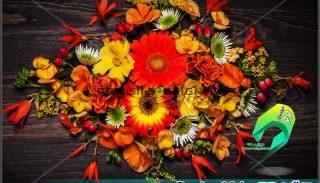 دانلود عکس گل روی چوب